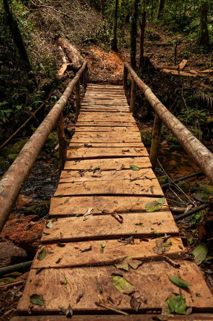 Ponte da Trilha